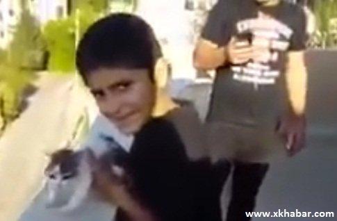 لبناني مقيم في الأردن يرمي قطة من الطابق الرابع