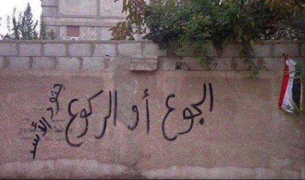صور مؤثرة من مضايا السورية