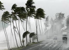 مصلحة الابحاث الزراعية توضح حقيقة عاصفة