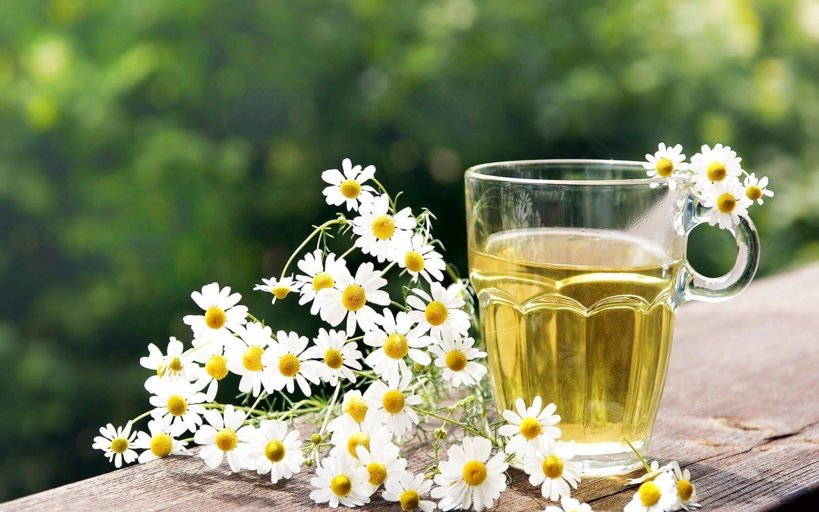 قناع البابونج والعسل لعلاج البشرة