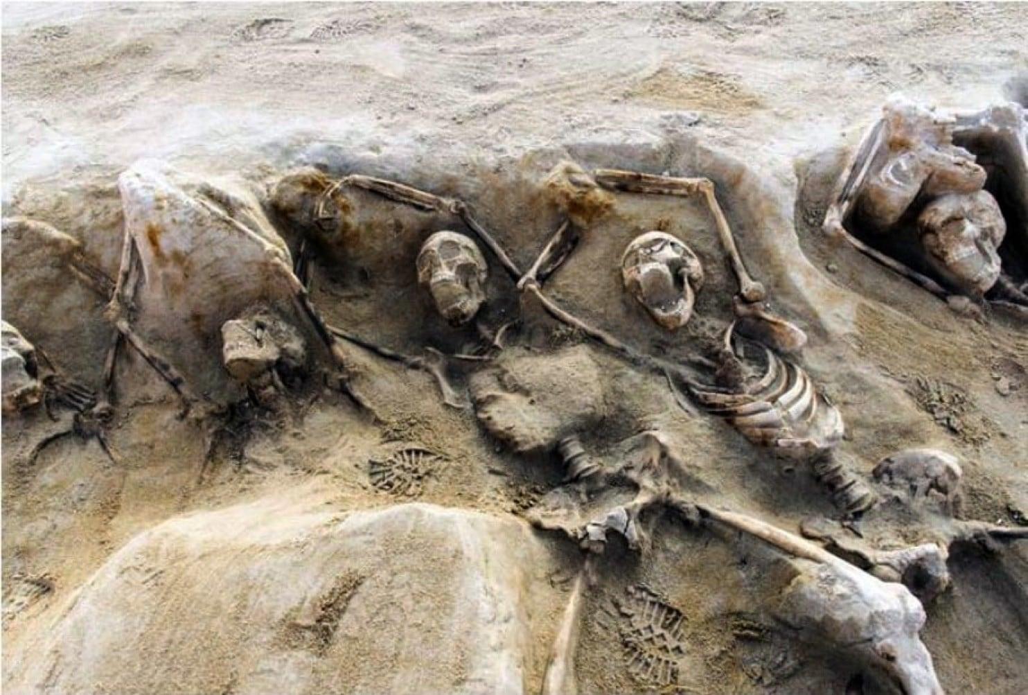 اكتشاف أكثر من 200 مقبرة جماعية في العراق