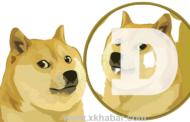 عملة Doge الرقمية تتقدّم مجددا الى ربع دولار